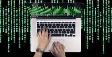 ¿Cuáles son los sistemas operativos?