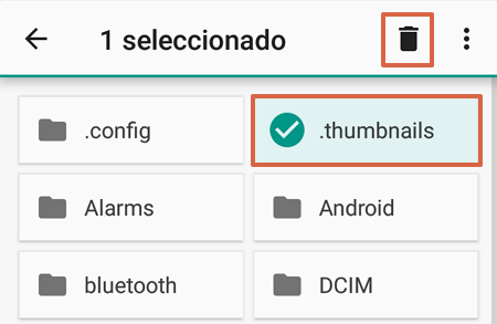 Cómo borrar archivos thumbnails manualmente paso 6