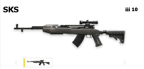 Tipos de armas y sus características. Rifles de asalto. SKS
