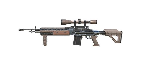Tipos de armas y sus características. Rifles de asalto. WOODPECKER